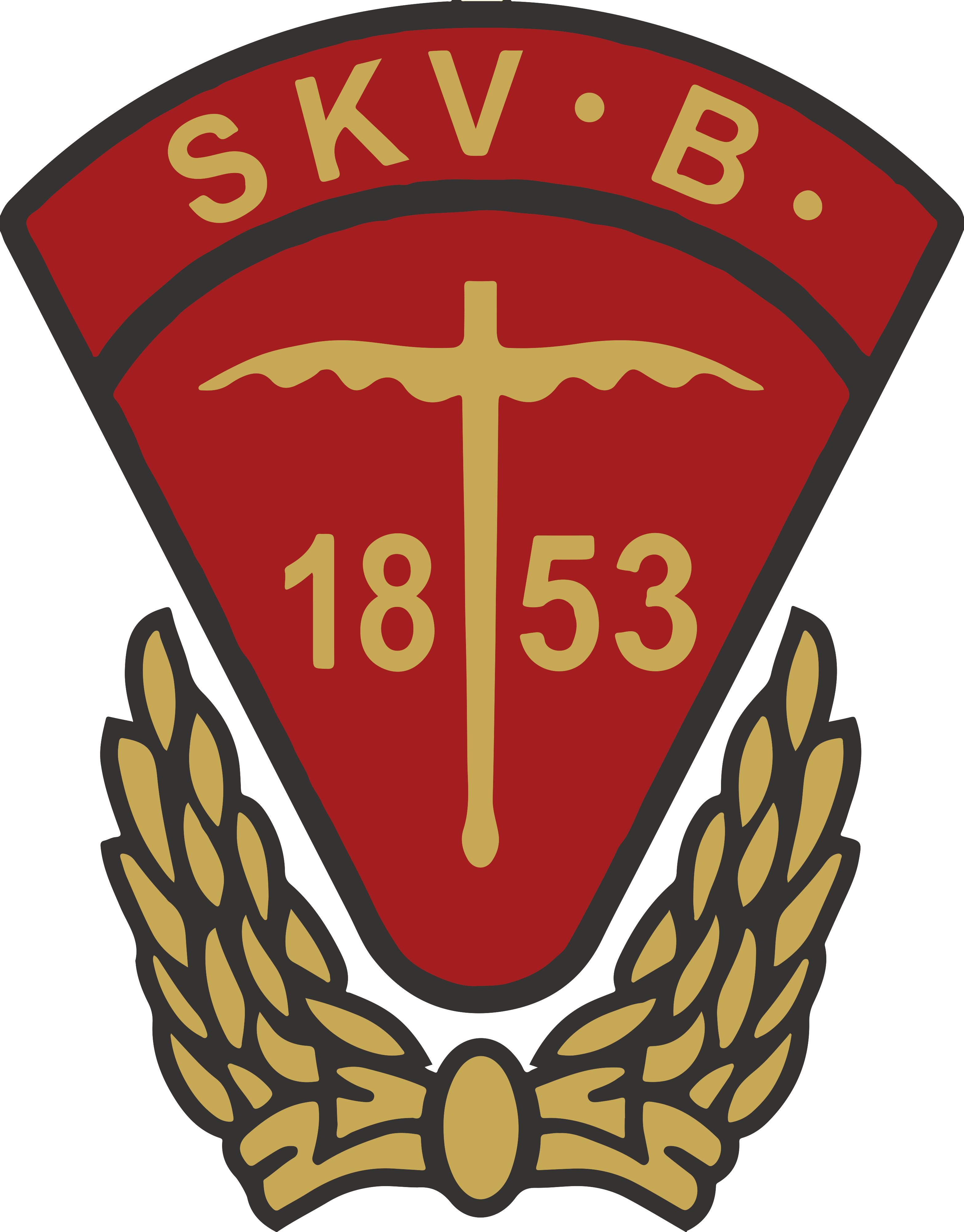 SKVB Logo